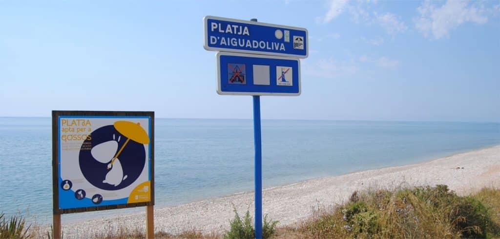 Playa Daiguaoliva para perros