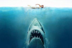 Película Tiburón en La Marina