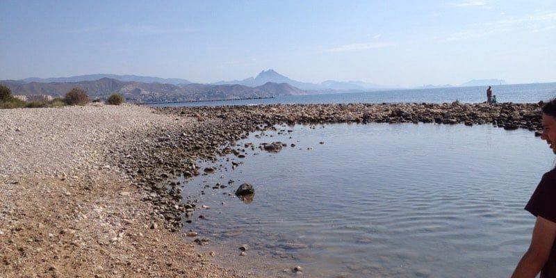Playa de Campello para perros