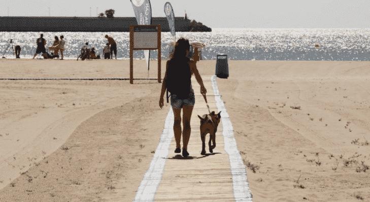 Playa de Pinedo para perros