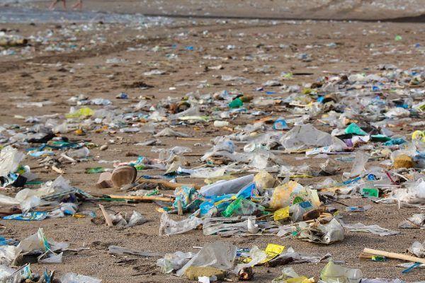 Recogida de plásticos en la playa La Malvarrosa de València