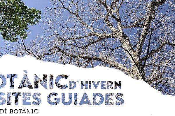 Visitas guiadas en el Jardín Botánico de Valencia
