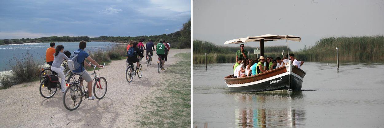 Paseo en bici y barco por la Albufera